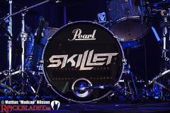Skillet (20160531)